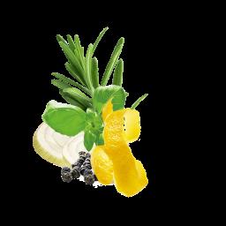 Fish With Lemon Content Ru