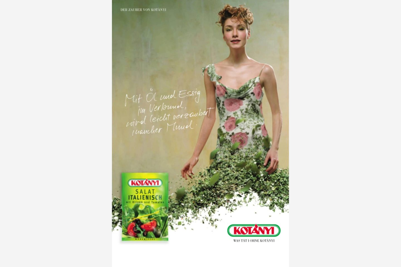 Реклама Kotányi, 2000-ті рр.