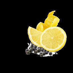Zitronenpfeffer Inhalt